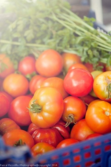 Photographe entreprise artisanat | reportage artisanat | au marché | étal tomates | Aveyron (12)